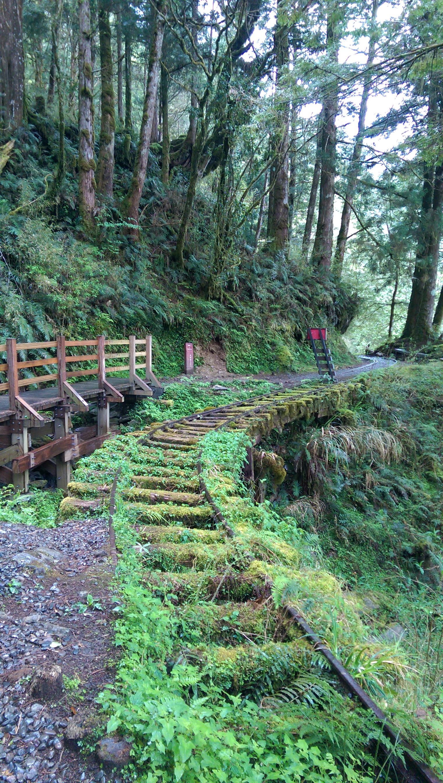 The best world's historic trail – Jiancing National Trail